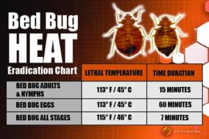 Bed bug heat eradication chart