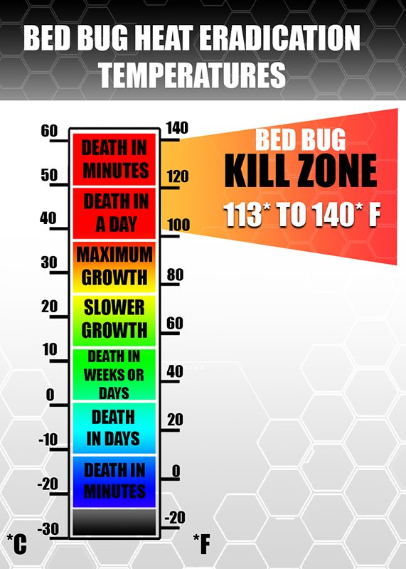 How To Kill Bed Bugs With Heat Or Cold